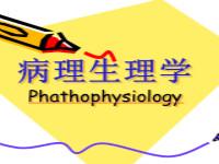 病理生理学(共20套打包)